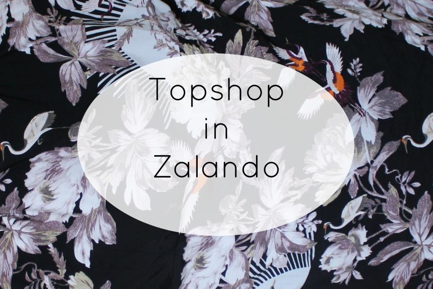 Topshop in Zalando