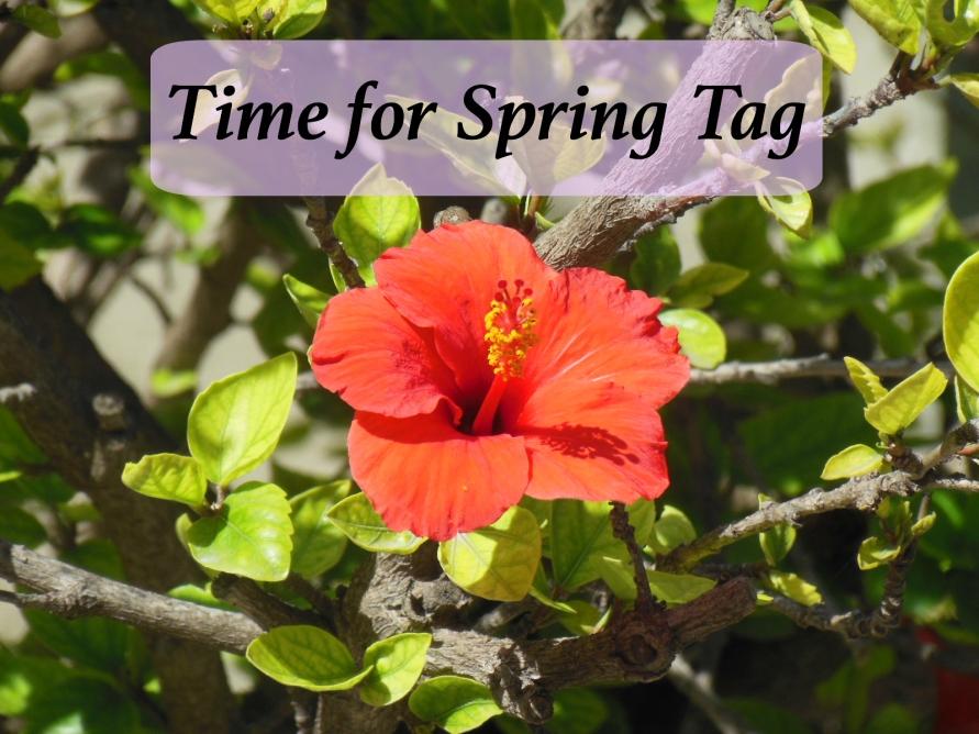 Time for Spring Tag BeautyBitsBlog.com